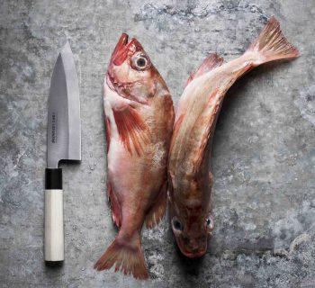 Bunmei Deba Knife 16.5cm